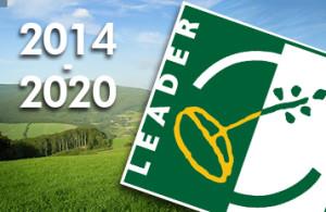 leader20142020
