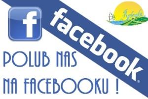 facebook_rdr