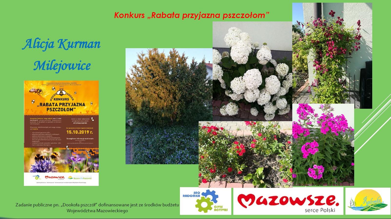 "Laureaci konkursu ""Rabata przyjazna pszczołom"""