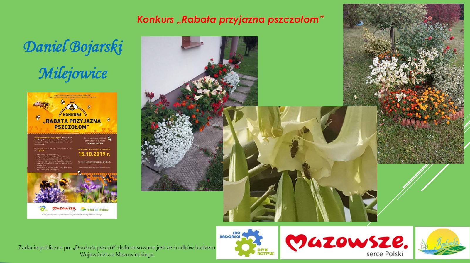 """Przedstawiamy laureatów konkursu """"Rabata przyjazna pszczołom"""""""
